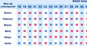 calendario para saber si estoy embarazada gratis