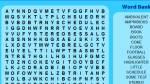 Jeux Sopa de letras en ingles